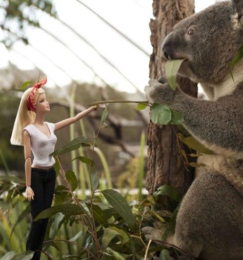barbie_koala_slide